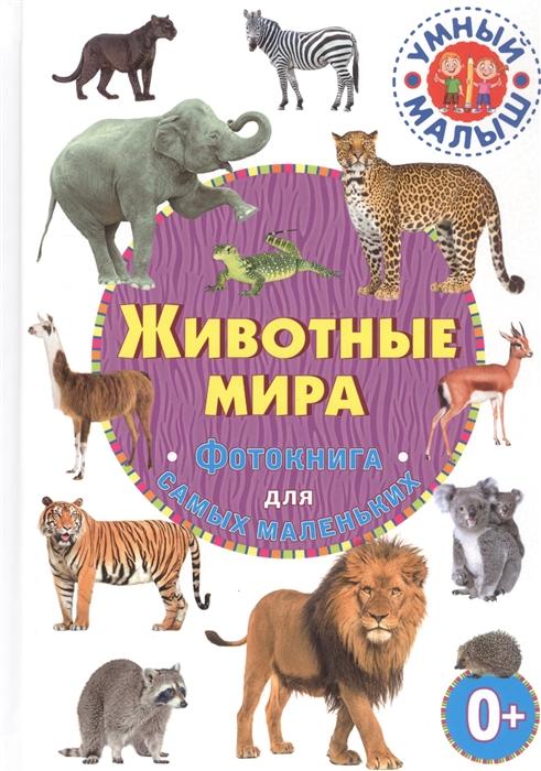 Купить Животные мира Фотокнига для самых маленьких, Владис, Первые энциклопедии для малышей (0-6 л.)