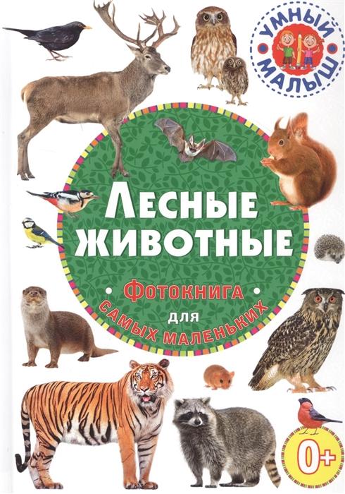 Купить Лесные животные Фотокнига для самых маленьких, Владис, Первые энциклопедии для малышей (0-6 л.)