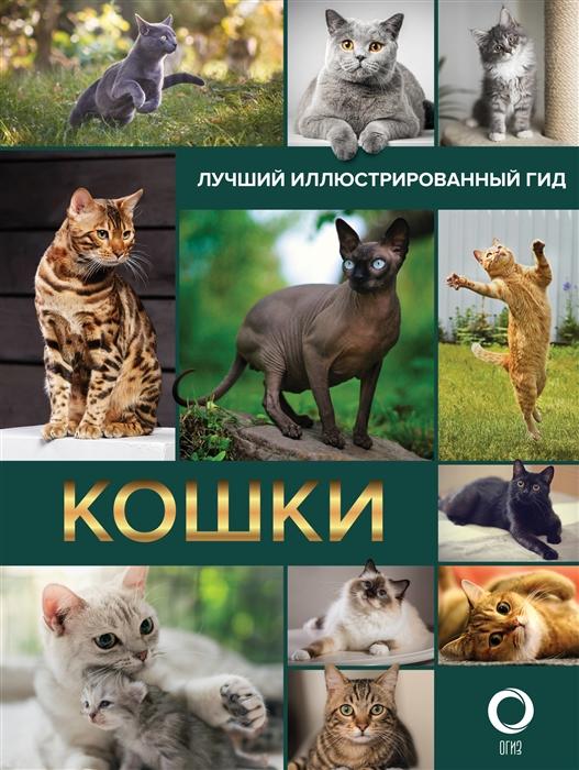 Фото - Непомнящий Н. Кошки Лучший иллюстрированный гид николай непомнящий все о кошках иллюстрированный гид