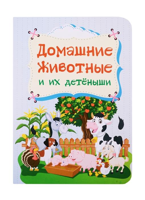 Мельник В., Мамина Н., Андреева Ю. Домашние животные и их детеныши мельник в мамина н андреева ю домашние животные и их детеныши