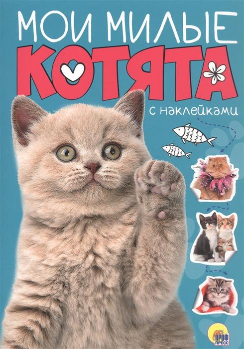 Купить Мои милые котята с наклейками, Проф - Пресс, Книги с наклейками