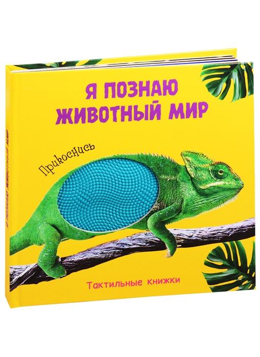 Фото - Брагинец Н. Я познаю животный мир Тактильная книжка брагинец н книжка гармошка милая панда