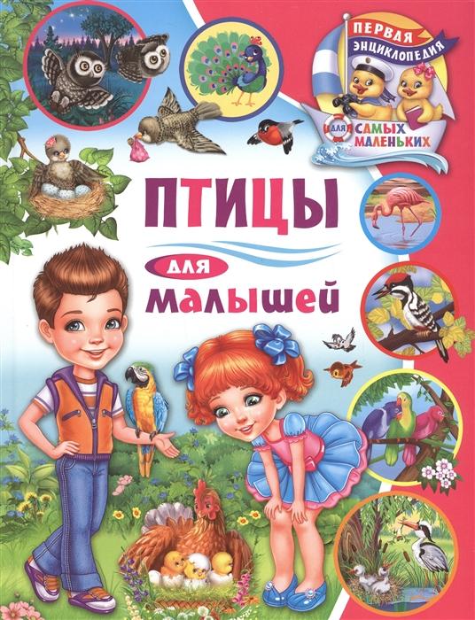 Купить Птицы для малышей, Владис, Первые энциклопедии для малышей (0-6 л.)