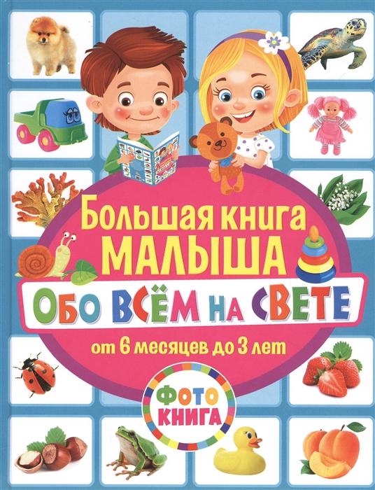 Купить Большая книга малыша обо всем на свете От 6 месяцев до 3 лет Фотокнига, Владис, Первые энциклопедии для малышей (0-6 л.)