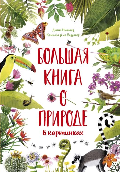 Купить Большая книга о природе в картинках, Махаон, Естественные науки