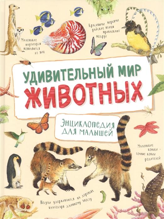 Ренне Удивительный мир животных Энциклопедия для малышей
