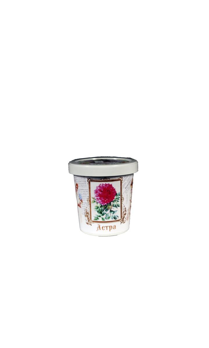 Набор для выращивания Астра (G1499) (Моисеенко)