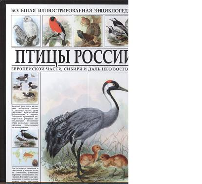 Птицы России. Большая иллюстрированная энциклопедия