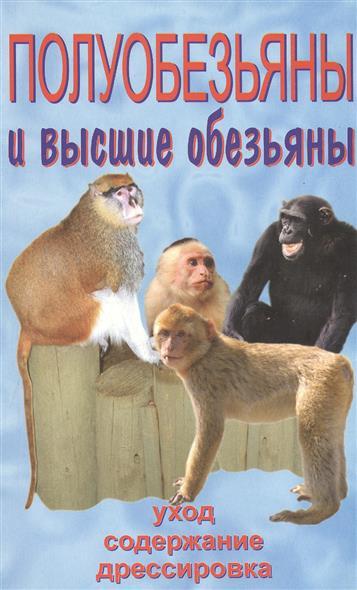 Полуобезьяны и высшие обезьяны. Содержание и уход