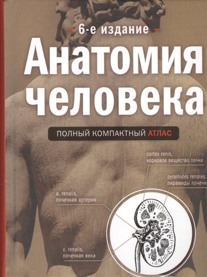 Боянович Ю. Анатомия человека. Полный компактный атлас ю в боянович анатомия человека компактный атлас раскраска