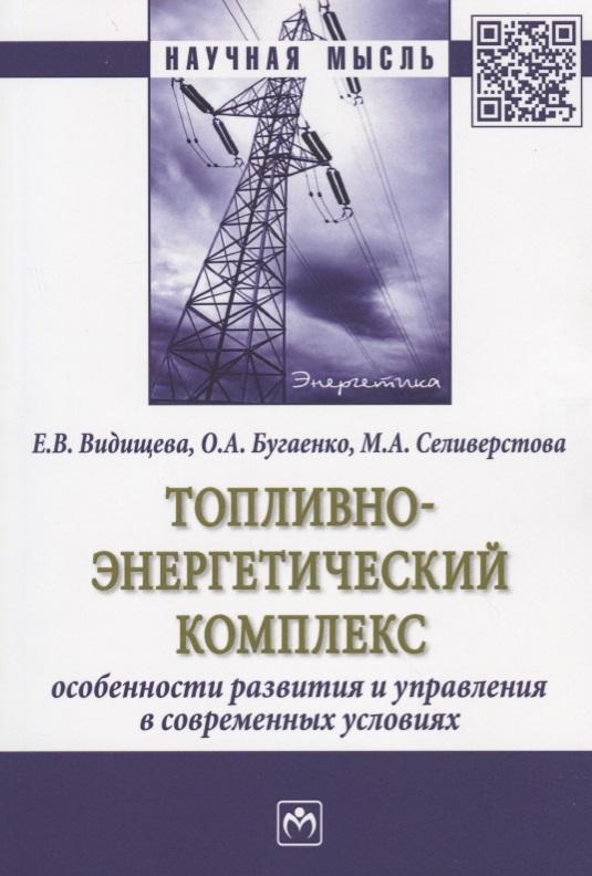 Топливно-энергетический комплекс. Особенности развития и управления в современных условиях. Монография