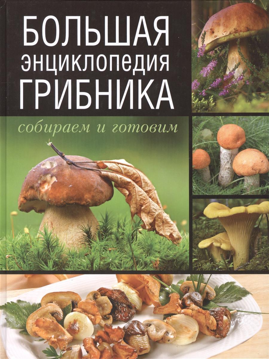 Большая энциклопедия грибника. Собираем и готовим