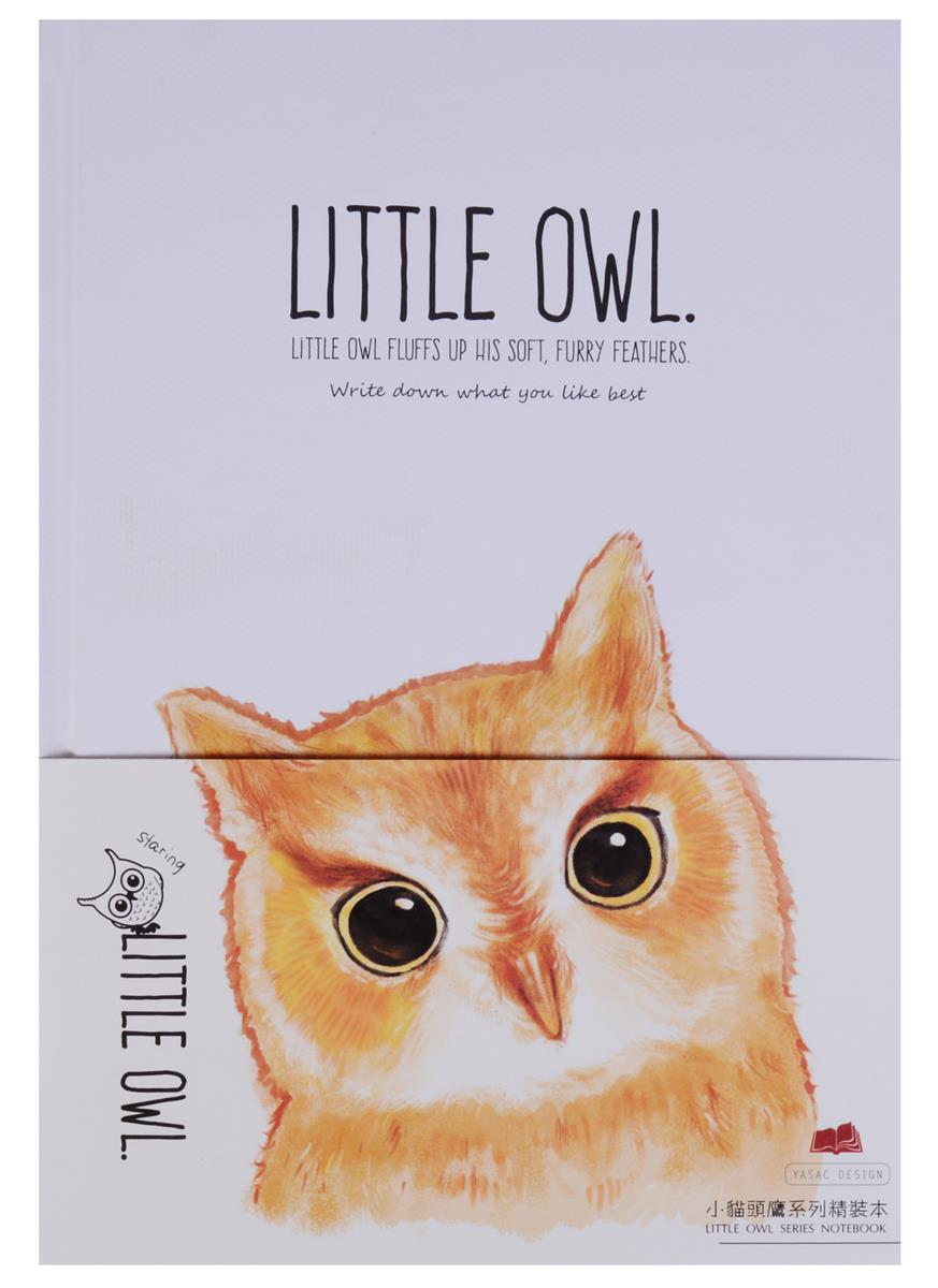 "Блокнот ""Little owl"""