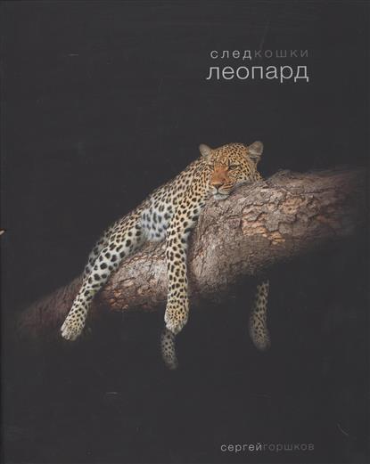 След кошки. Леопард