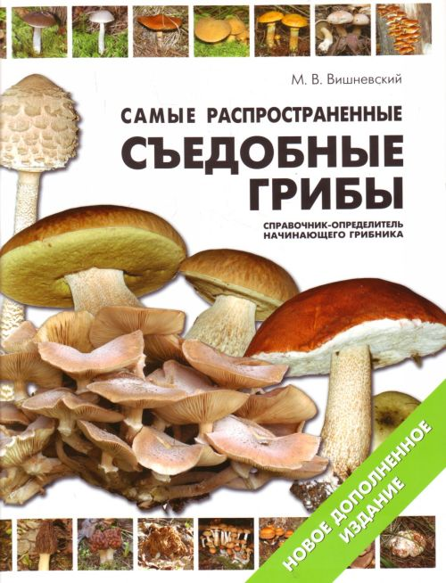 Вишневский М. Самые распространенные съедобные грибы… владислав вишневский пятно