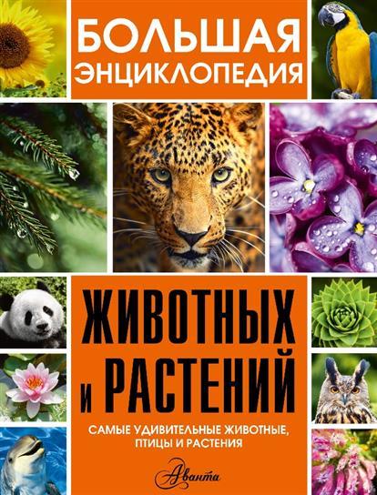 Большая энциклопедия животных и растений (комплект из 3 книг) большая энциклопедия животных и растений комплект из 3 х книг