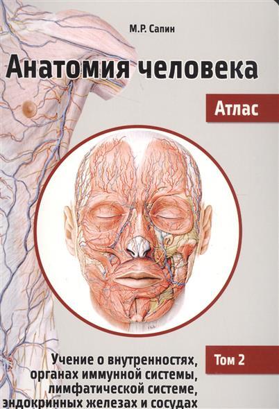 Сапин М. Анатомия человека. Атлас. В 3 томах. Том 2. Учение о внутренностях, органах иммунной системы, лимфатической системе, эндокринных железах и сосудах анатомия по пирогову атлас анатомии человека в 3 х томах том 1 верхн конечн ниж конечн cd