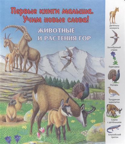 Комарова О. (отв.ред.) Животные и растения гор животные и растения экологические очерки