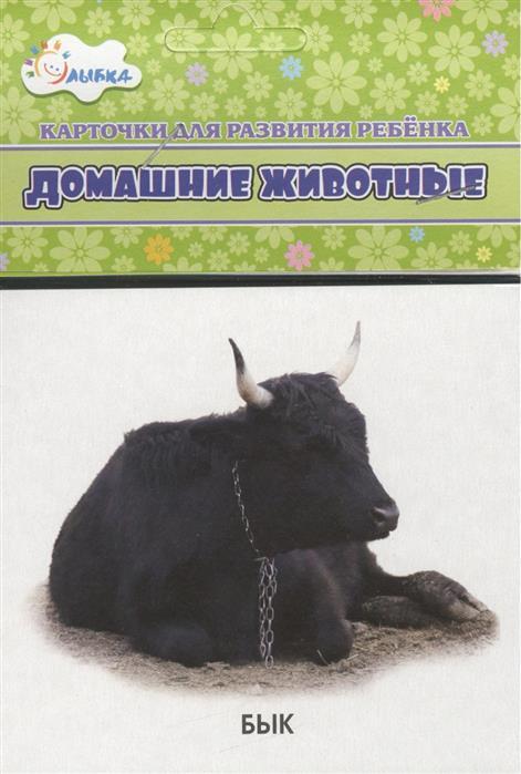 Карточки для развития ребенка Домашние животные дидакт карточки домашние животные и их детеныши