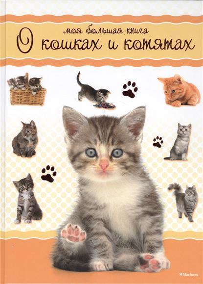 Цыпилева Е. (ред.) Моя большая книга о кошках и котятах книги издательство махаон моя большая книга о кошках и котятах
