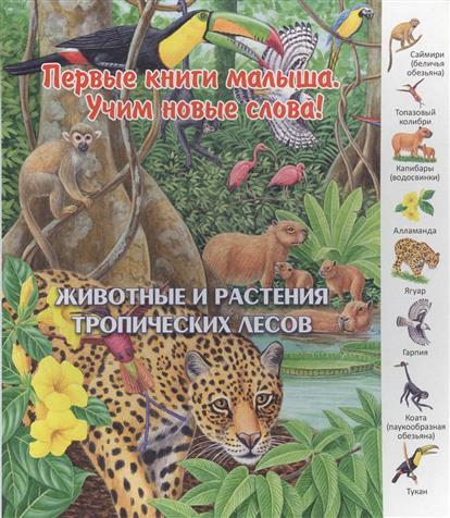 Комарова О. (отв.ред.) Животные и растения тропических лесов азбукварик животные и растения 01409 1