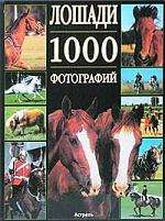 Леклер Б. Лошади. 1000 фотографий бологова в моя большая книга о животных 1000 фотографий