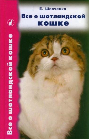 Все о шотландской кошке Скоттиш фолды страйты…