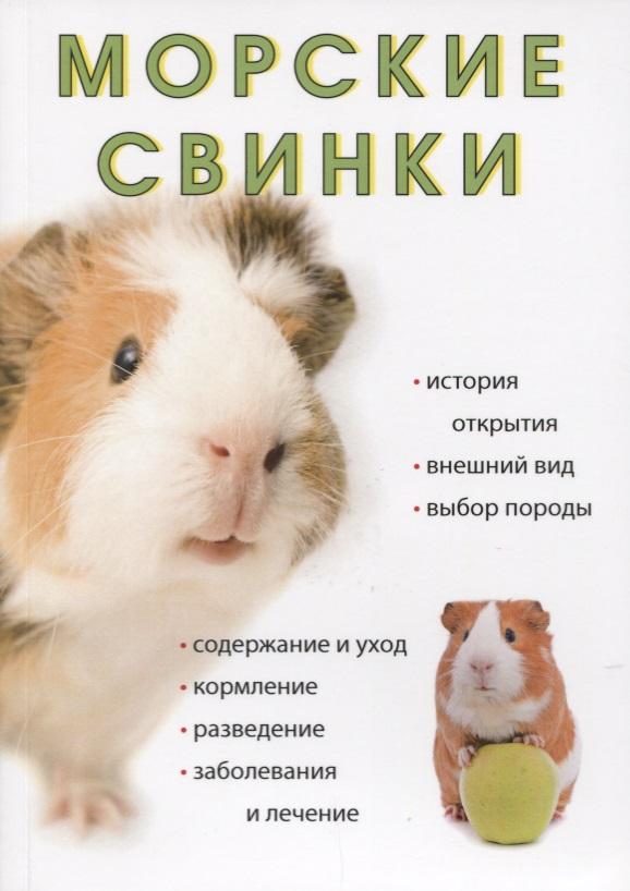 Морские свинки от Читай-город
