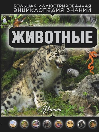 Кошевар Д. Животные