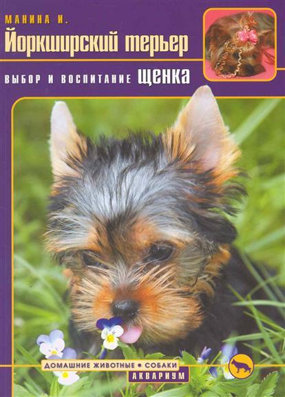 Йоркширский терьер Выбор и воспитание щенка