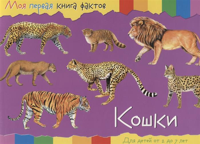 Кошки. Для детей от 2 до 7 лет