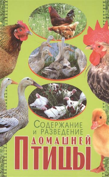 Содержание и разведение домашней птицы