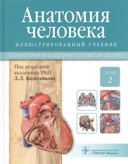 Анатомия человека. Учебник: Том 2. Спланхнология и сердечно-сосудистая система