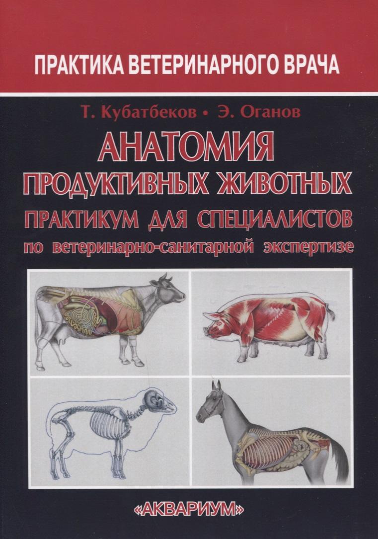 Анатомия продуктивных животных Практикум для специалистов по ветеринарно-санитарной экспертизе
