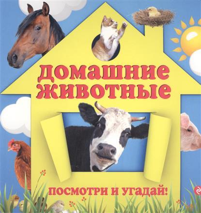 Прищеп А. Домашние животные