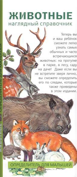 Животные. Наглядный справочник. Определитель для малышей