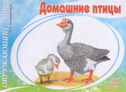 Багинская А., Багина О. (худ.) Домашние птицы ISBN: 9785000400760