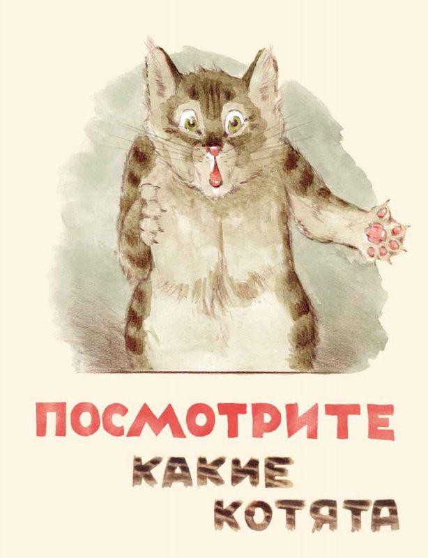 Матвеев В. Посмотрите какие котята британские котята вислоухие полосатые в дзержинске дешево