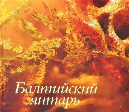 Балтийский янтарь из собрания Калининградского музея янтаря