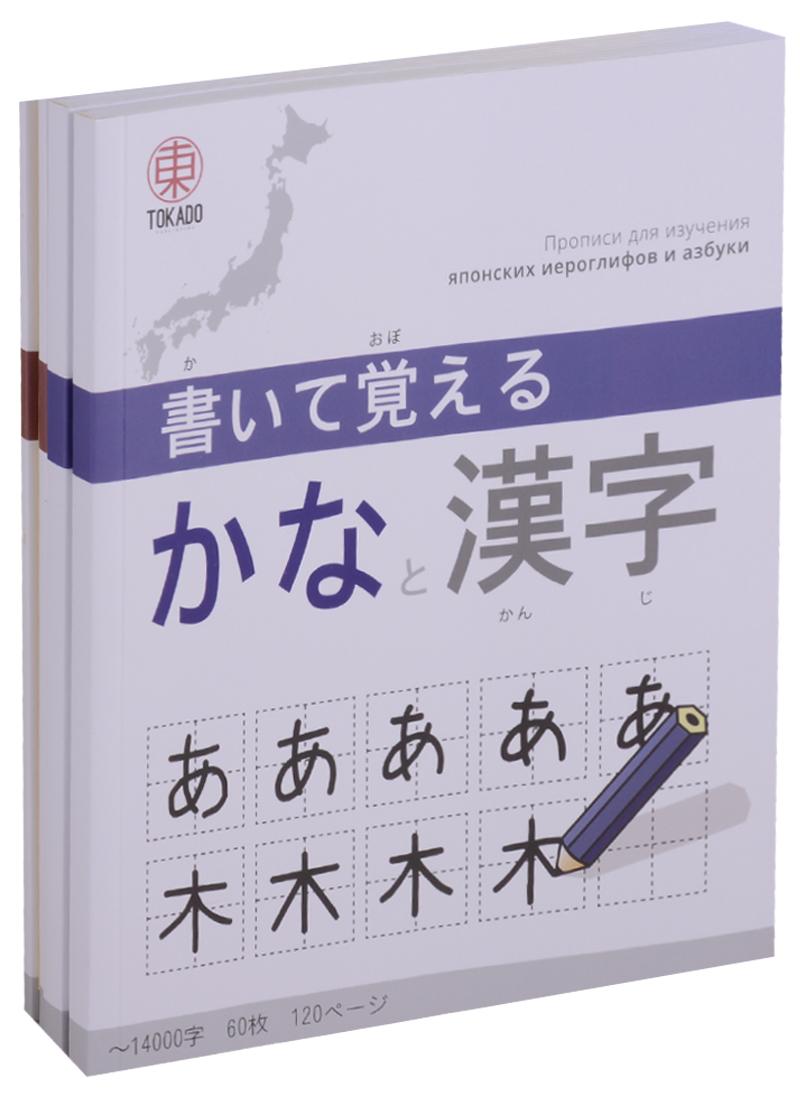 Набор для изучения японских иероглифов сканер японских иероглифов