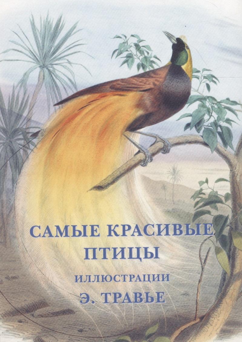 Самые красивые птицы. Набор открыток ISBN: 9785779346108