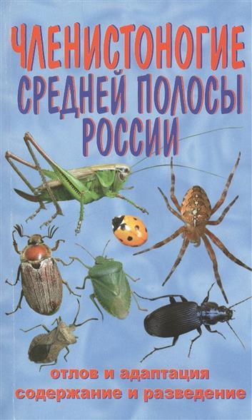 Ползиков В.: Членистоногие Средней полосы России