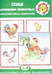 Семья Домашние животные