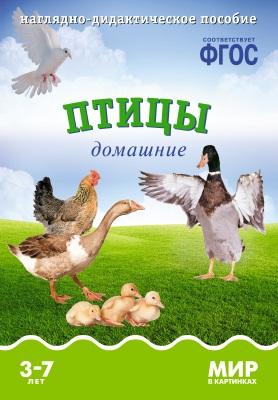Минишева Т. Птицы домашние. Наглядно-дидактическое пособие распорядок дня наглядно дидактическое пособие
