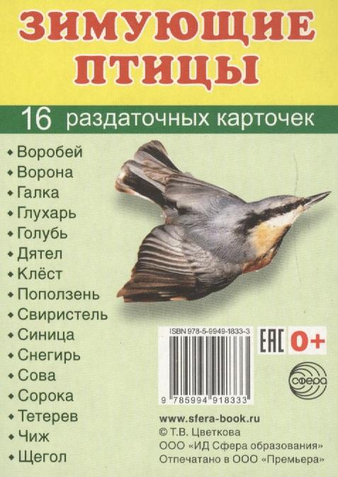 Зимующие птицы. 16 раздаточных карточек т в цветкова зимующие птицы раздаточные картинки набор из 16 карточек