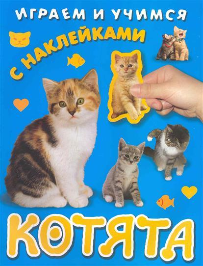 КН Котята