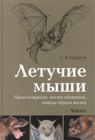 Летучие мыши Происхождение, места обитания, тайны образа жизни