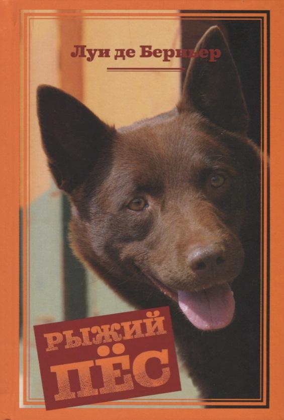 где купить Берньер Л. Рыжий пес ISBN: 9785389125964 дешево