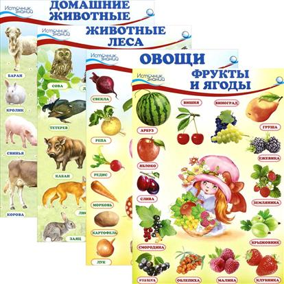 Комплект познавательных мини-плакатов: Окружающий мир. Животные и растения животные и растения экологические очерки