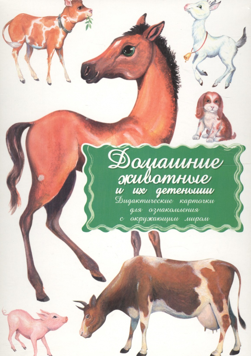 Дидакт. карточки Домашние  животные и их детеныши кто мой малыш животные и их детеныши